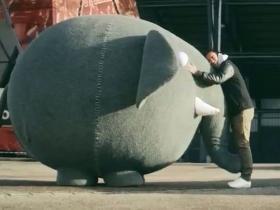 Van Bronckhorst en Blijdorp-olifant hit op YouTube