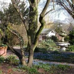 Eeuwfeest Botanische Tuin Kralingen 1913-2013
