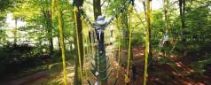 Slingeren als Tarzan in het Kralingse Bos?