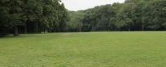 Dronken man valt stel aan in Kralingse Bos