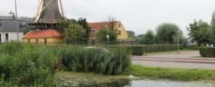 Petitie: 'Geef Kralingse Bos terug aan de stad!'