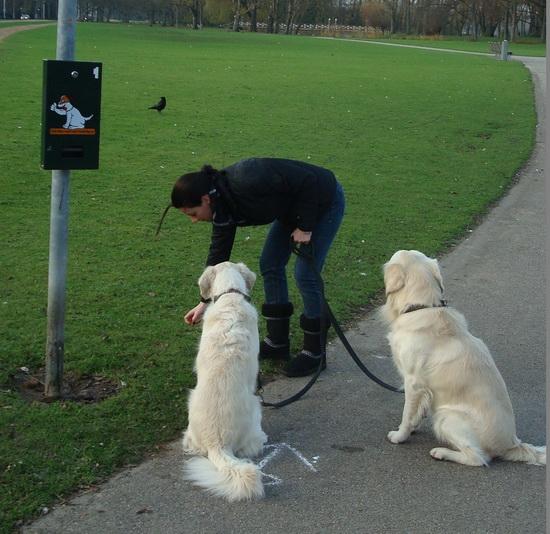 hondendispenser