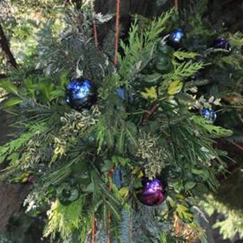 Leuke activiteiten in de kerstvakantie voor kinderen en jongeren
