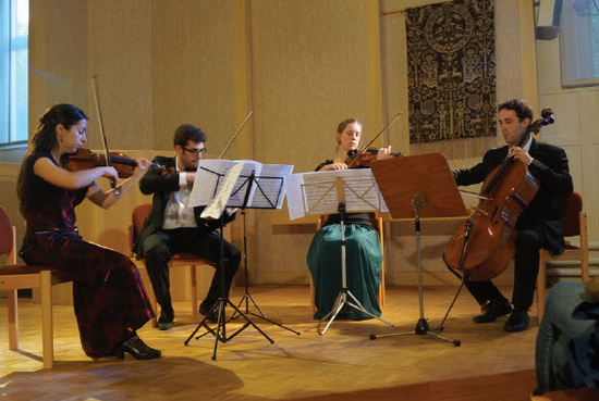 concert Muzikc