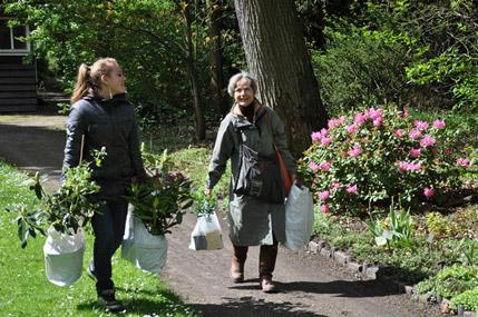 Voorjaars-Plantendagen bij Trompenburg