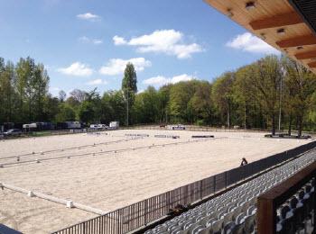 Maak NU kennis met de paardensport en de Rotterdamsche Manège!