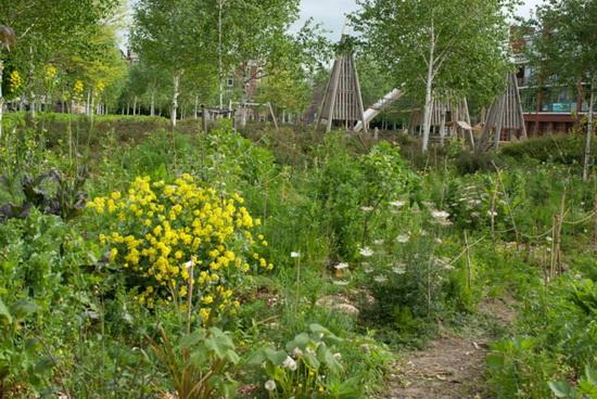 Feestelijke opening voedselbos kralingen zondag 18 mei for De tuin kralingen