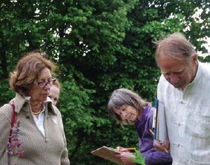 Geneeskrachtige kruiden in Botanische Tuin