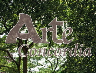 Unieke vlaggen op de Boompjes voor Arte Concordia