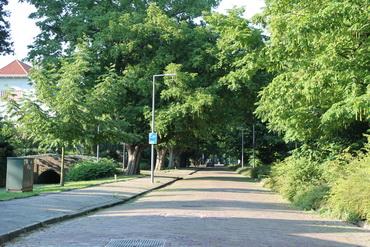 'Wandelwijk' van start in Kralingen-West