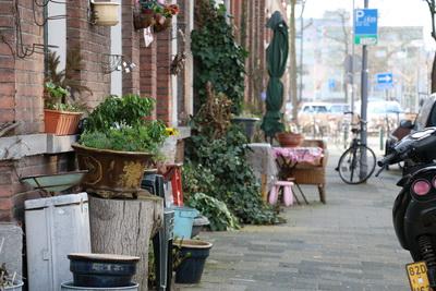 Huizen van de wijk in heel rotterdam de ster online for Wijk in rotterdam