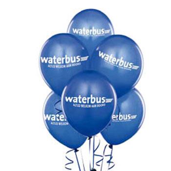 Waterbus lijn 19 één jaar!