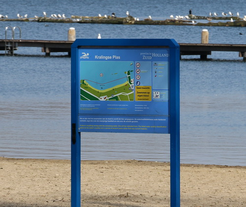 Rotterdam pakt in najaar blauwalg aan in Kralingse Plas