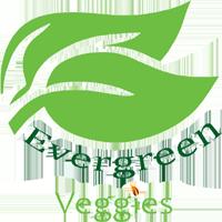 logo evergreen