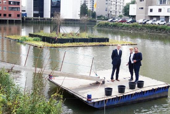 Sterfotograaf Winish Chedi viel niet in het water, afgelopen vrijdag. Van links naar rechts: Johan Vermeer van het Ingenieursbureau van de gemeente Rotterdam, Linda-Rose Santhagens van Rijkswaterstaat en Tieme Haddeman van Urban Green.