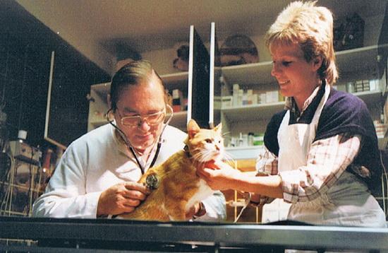 Geert Meursing dierenarts