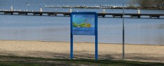 Rotterdamse raad wil snel oplossing voor vissterfte Kralingse Plas