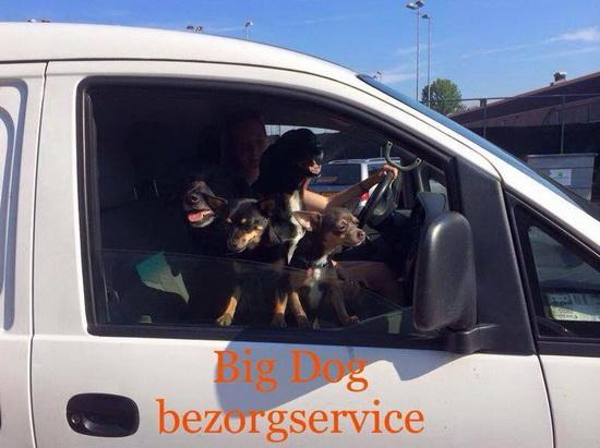 Big Dog Company Rotterdam