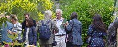 Midzomer-wandelingen in Kralingen met historicus Dik Vuik