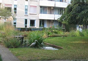 Première tijdens de 10e Kunstroute Kralingen-Crooswijk