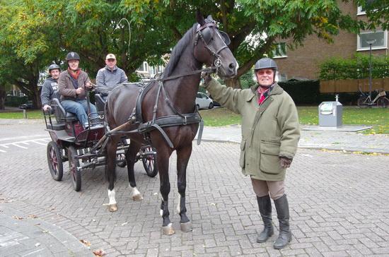 'Passie voor het paard'