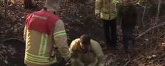 Teckel zit urenlang vast in ondergrondse buis Kralingse Bos