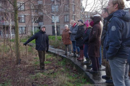 'Woodwide web' in het Voedselbos Kralingen