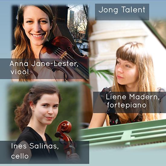 De Zweedse Mozart door Ensemble Più Corde in de Lambertuskerk