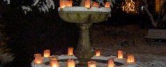 De ster online nieuws kralingen crooswijk prins for De tuin kralingen