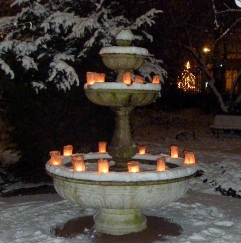 15 december: Lichtjesavond in de Botanische Tuin Kralingen