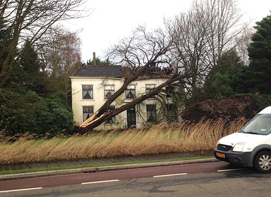 Grote schade Villa Landzicht door omgewaaide boom