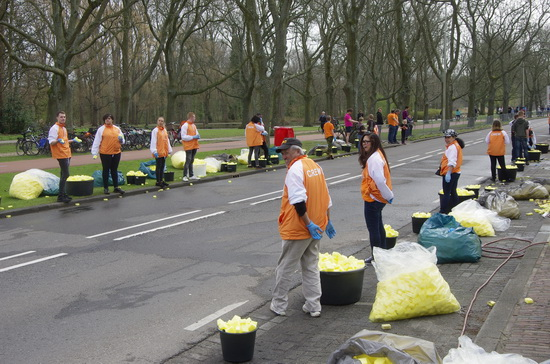 Marathon Rotterdam op en langs de Kralingse Plaslaan