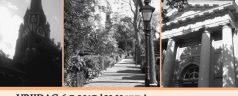 Hoflaan Wandelconcert: Tijdreis