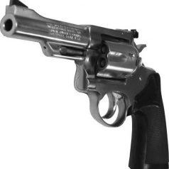 Spelende kinderen vinden vuurwapen op Eiland van Brienenoord