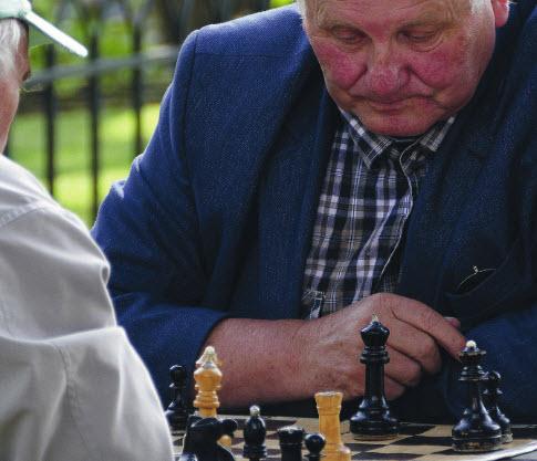 Wijksteunvriend voor boodschappen en een potje schaken???
