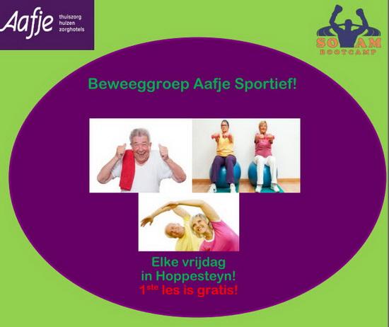 Beweeggroep Aafje Sportief!