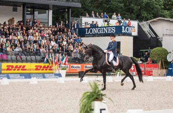 Verkeersmaatregelen i.v.m. Europese kampioenschappen springen, dressuur en para-dressuur in Kralingse Bos