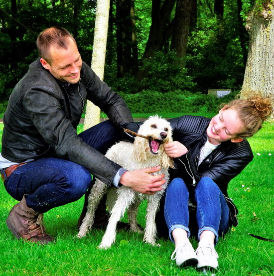 Kralingse Hondenstrandje verdwijnt en hondenbeleid op de schop