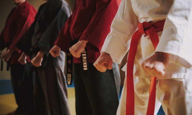 Karateka-legende Loek Hollander overleden