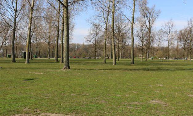 Toegangswegen en parkeerplaatsen Kralingse Bos gaan dicht