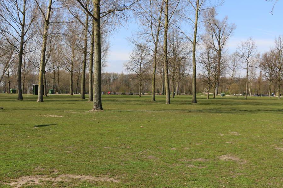 Kralingse Bos weer deels dicht om risico op omwaaiende bomen