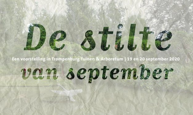 De stilte van september – Een voorstelling in Trompenburg Tuinen & Arboretum