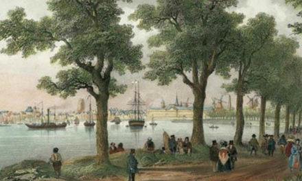 September 2020, de Rotterdamse Parkenmaand
