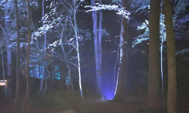 Lichtshow De Grote Schijn in Kralingse Bos gaat niet door