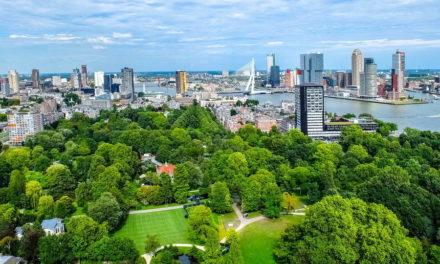 Rotterdam krijgt steeds meer groen