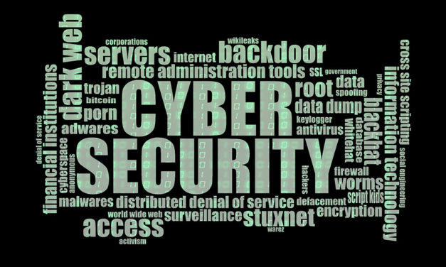 Privacy en Cyber Security in Nederland