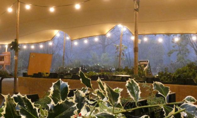 Trompenburg sluit takkenjaar feestelijk af