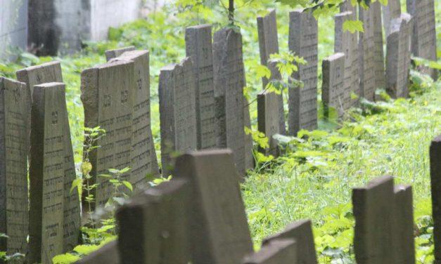 Joodse begraafplaats Oostzeedijk gaat glazen platen vervangen na zoveelste vernieling