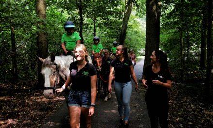 Therapeutische lessen Werken als een Paard voor nóg meer kinderen uit het speciaal onderwijs
