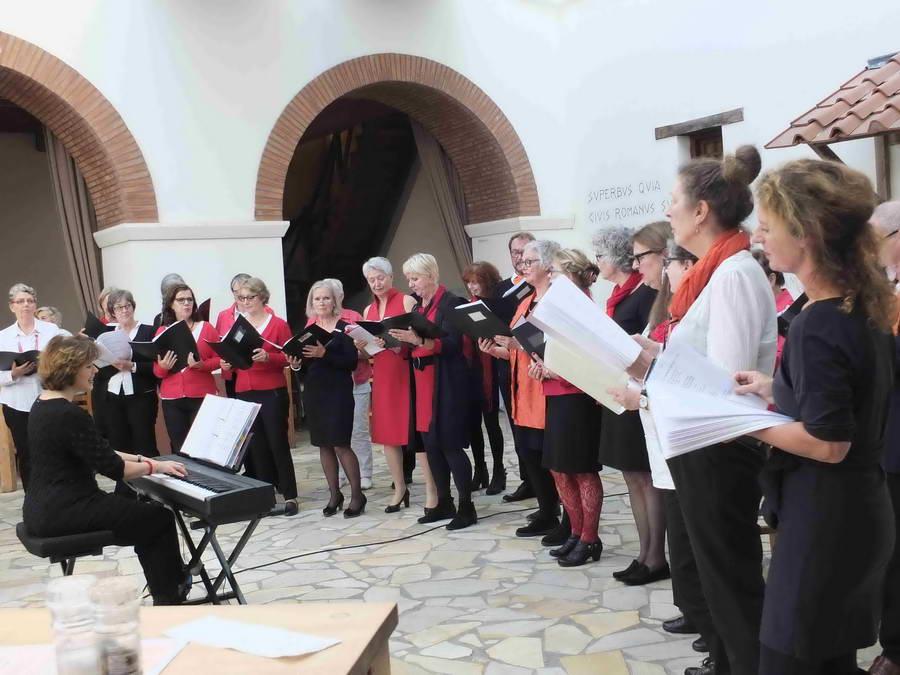 4 WEKEN GRATIS OVERDAG MEEZINGEN met koor Bram en Saar!!